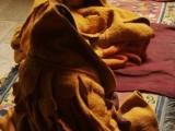 Blanketed monks at Karsha gompa