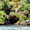 World Rivers: Croatia & Montenegro